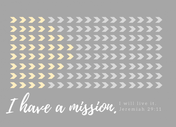 I Have A Mission – Paul Mints